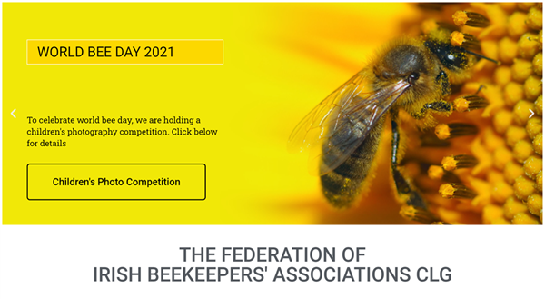 Bee Enthusiastic - A  Great Bee PHOTO Competition
